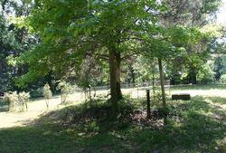 Peevyhouse Cemetery