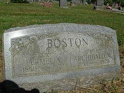Permelia <i>Coulter</i> Boston