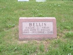 Callie <i>Palmer</i> Bellis