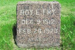 Roy E Fry