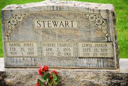 Lewis Jenkin Stewart