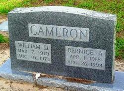Bernice Alene Cameron