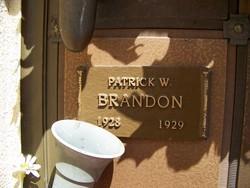 Patrick W Brandon
