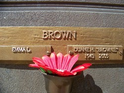 Duane H Brown