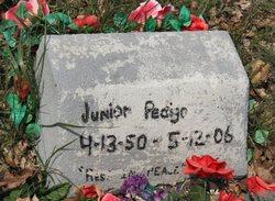 Vernon Junior Pedigo, Jr