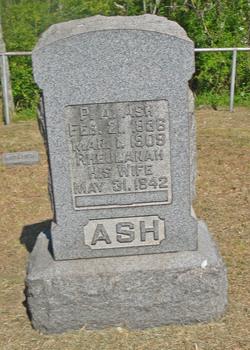 Peter A. Ash
