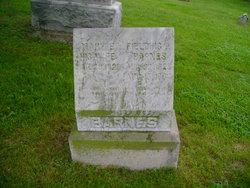 Fielding Pleasant Barnes
