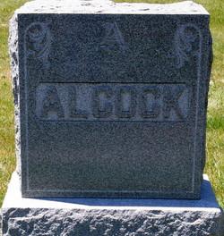 John Henry Alcock
