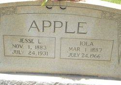 Iola <i>Brown</i> Apple
