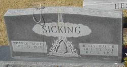 Elizabeth Ann Betty <i>Walter</i> Sicking
