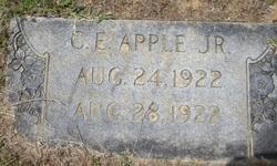 Charles Edgar Apple, Jr