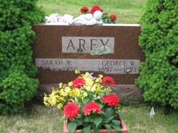 George W Arey