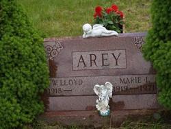 Marie L Arey