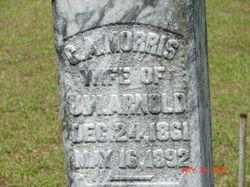 Carolina Amanda <i>Morris</i> Arnold