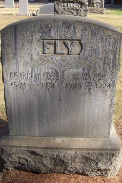 Charioty <i>Clark</i> Fly