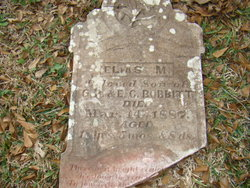 Elias M Bobbitt