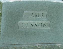 Delia J <i>Cook</i> Lamb