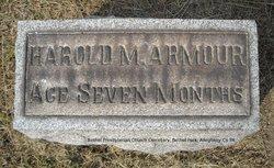 Harold M. Armour