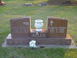 Elise N Allen