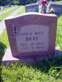 Viola Blanche <i>Wilt</i> Bray