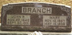 John Roberson Branch