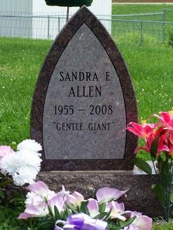 Sandy Elaine Allen