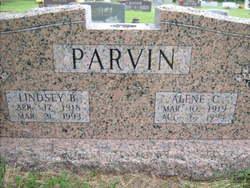 Dessie Alene <i>Carter</i> Parvin