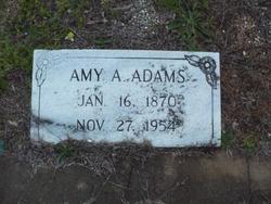 Amy Agnes Adams