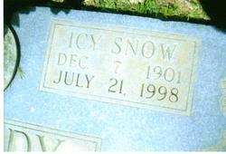 Ice Snow Icy <i>Hale</i> Kennedy