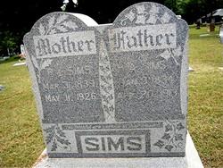 Rachel Louisa <i>Kirk</i> Chronister Sims