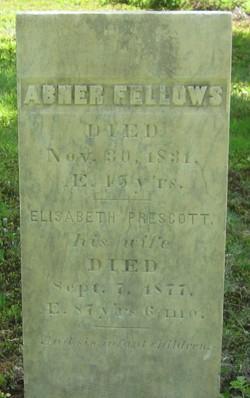 Abner Fellows