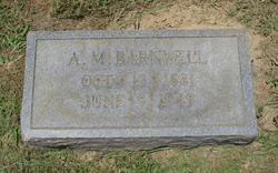 A. M. Barnwell