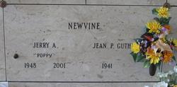 Jerry A Newvine