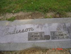 Arthur E Art Anderson