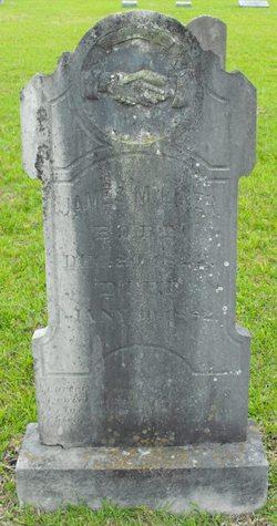 James Madison Liner
