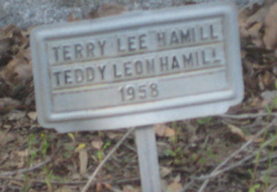 Terry Lee Hamill