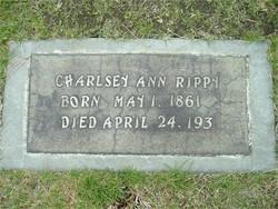Charlsey Ann <i>Wright</i> Rippy