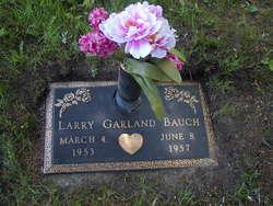 Larry Garland Bauch