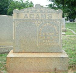 Elizabeth <i>Jenkins</i> Adams