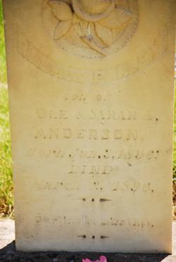 Rasmus Parley Anderson