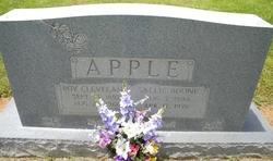 Sallie I. <i>Boone</i> Apple
