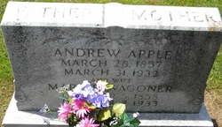 Andrew Andy Apple