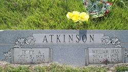 Tennessee Alabama <i>Newberry</i> Atkinson