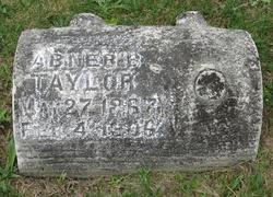 Abner B. Taylor