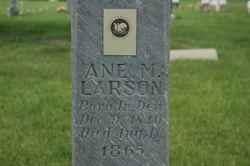Ane Marie Larson