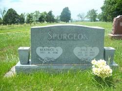 Dale Spurgeon