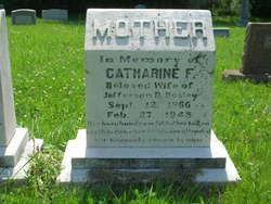 Catherine Frances <i>Gill</i> Bosley