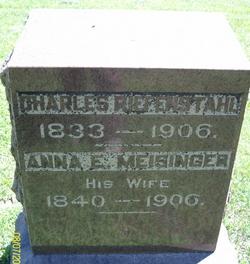 Anna E <i>Meisinger</i> Riefenstahl