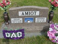 Edgar Joseph Amiot