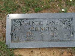 Arminta Jane Mintie <i>Harvey</i> Addington